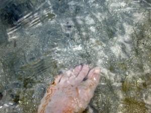 eau_claire