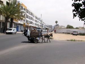 charrette tirée par des ânes à Agadir