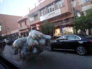 insolite au Maroc