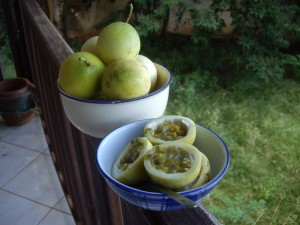 fruits_passion