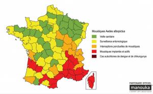 Moustiques-tigres en France