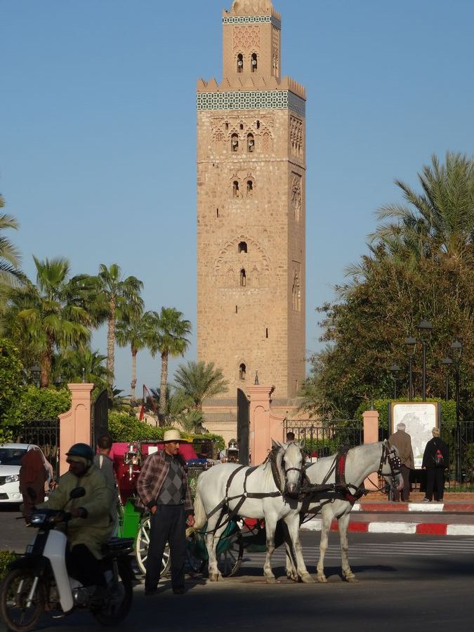 adan marrakech